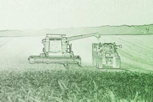 Сельскохозяйственное имущество